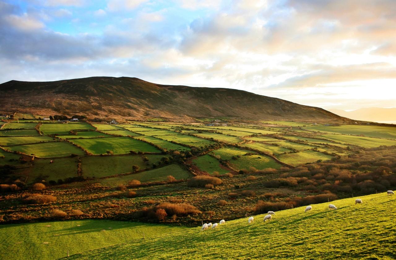 Dingle Peninsula, Irland